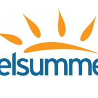 New logo design for Welsummer